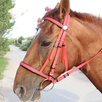 PVC Horse Reins For Large Horse Stainless Steel Hollow Mouth Bit Horse Riding Halter Racing Equestrian Equipment 1