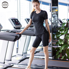 Hot Women Quick Dry Fitness Tights Yoga Set Running Sport Suit Female T-Shirt Shorts Tracksuit for Women Yoga Clothes for Sports female longsleve asics 134610 8065 sports and entertainment for women sport clothes tmallfs