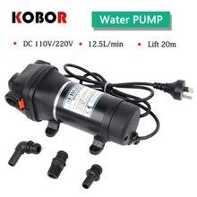 Fl-32 Fl-33 Lift 20m 35psi 110v/220v Ac Plug Household Large Flow Automatic Pressure Switch Mini Electric Diaphragm Water Pump