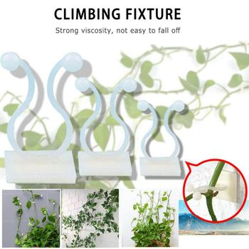 3 Size Invisible Wall Rattan Clamp Clip Plant Climbing Wall Clip Wall Vines Fixture Wall Sticky Hook Holder Garden Supplies 1PC image