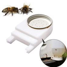 1PC Bee Beekeeping Feeder System Feeders Bees Feeding Bees Nest Door Water Bowl Drinking Dinkers Tools