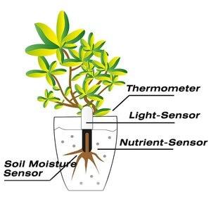 Image 5 - オリジナルの国際バージョンyoupin hhccフローラモニターデジタル植物草の花ケア土壌水分テスターセンサー植物detecto