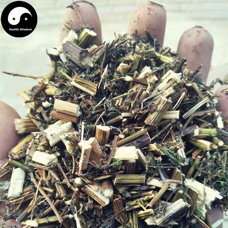 Qing Hao, Herba Artemisiae Annua, Artemisia Herb, Sweet Wormwood