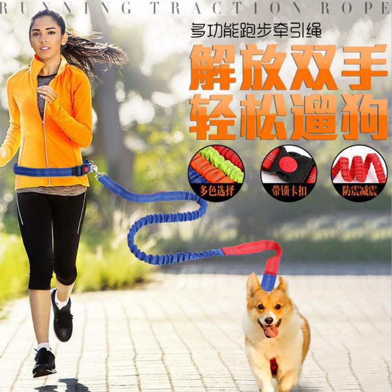 Pet Dog Hand Holding Rope Proof Punch Elastic Nylon Pet Running Hand Holding Rope Dog Traction Belt