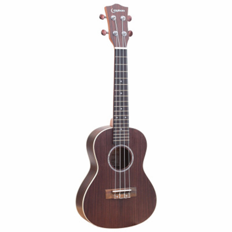 Abuo-longteam 23 pouces guitare ukulélé en palissandre mat ukulélé hawaïen Mini guitare