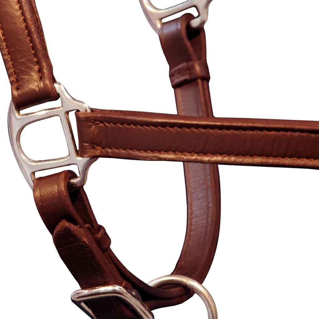 Có thể điều chỉnh Da Cưỡi Ngựa Headstall Thiết Bị Bền Ngựa Dây Lai Ngựa Dây Cương Ngựa Cheval Phụ Kiện