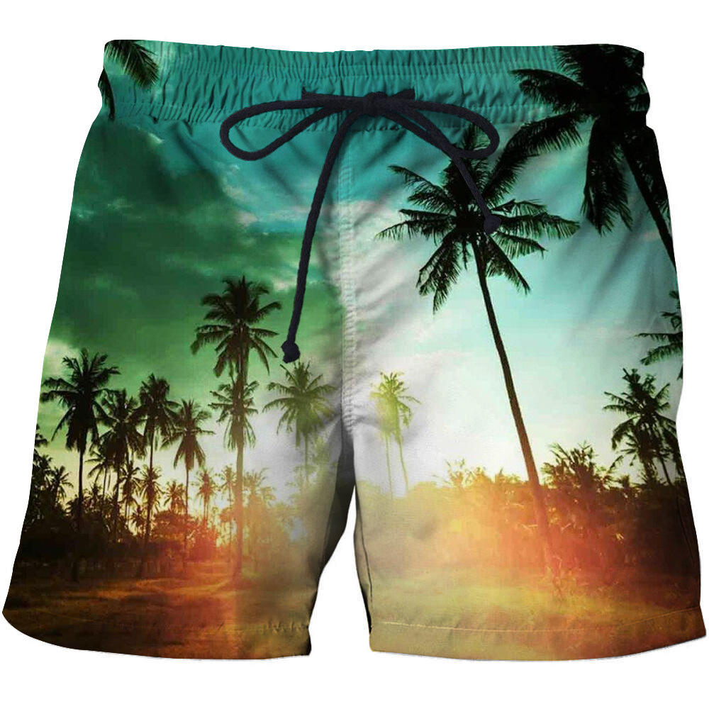 Summer Cool Quick Dry 3D Surfing Shorts Male Beach Printed Sport Swiming Shorts Mens Vacation Sport Swimsuit Mens
