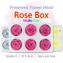 5-6cm 6 pçs grande preservado caixa de rosa floral fresco natural seco colorido flor cabeça presente diy material newyear decoração da casa de casamento