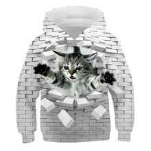 3D Kawaii cat kids bluzy z długim rękawem Two Cat bluzy pulowerowe topy bluzka sweter jesień chłopcy odzież sweter sudaderas