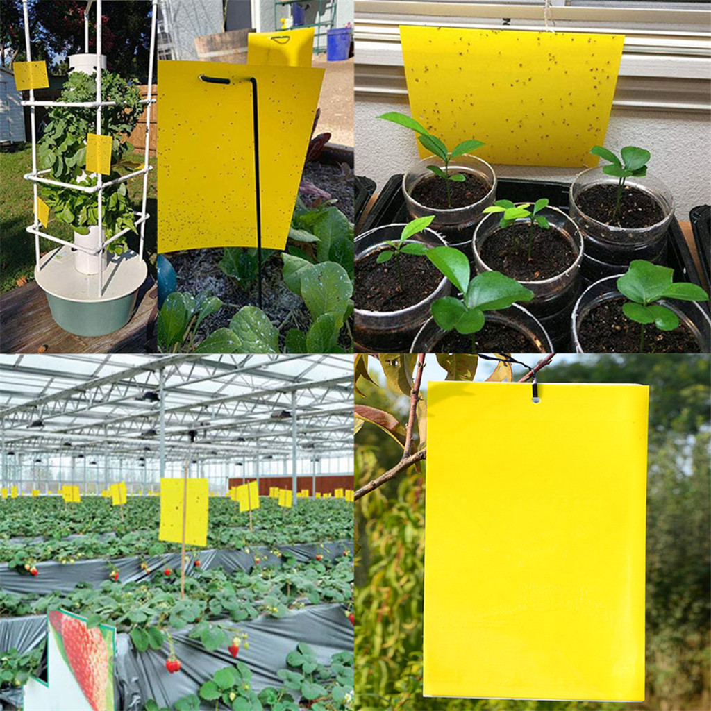 30^10/20/30Pc Two-sided Glue Stickers Yellow Hang Fly Trap Catchers Bug Insect Killer Pest Control Balcony Garden Livestock Farm