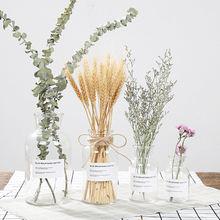 Стеклянная ваза белая домашний декор креативная кашпо для цветов
