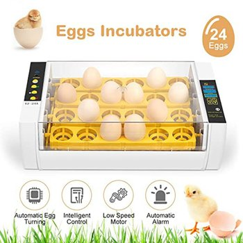24 eggs incubator Fully automatic egg incubator Chicken and duck egg breeding  household incubation equipment mini chicken egg incubator automatic 48 eggs hatching machine for sale de au free shipping