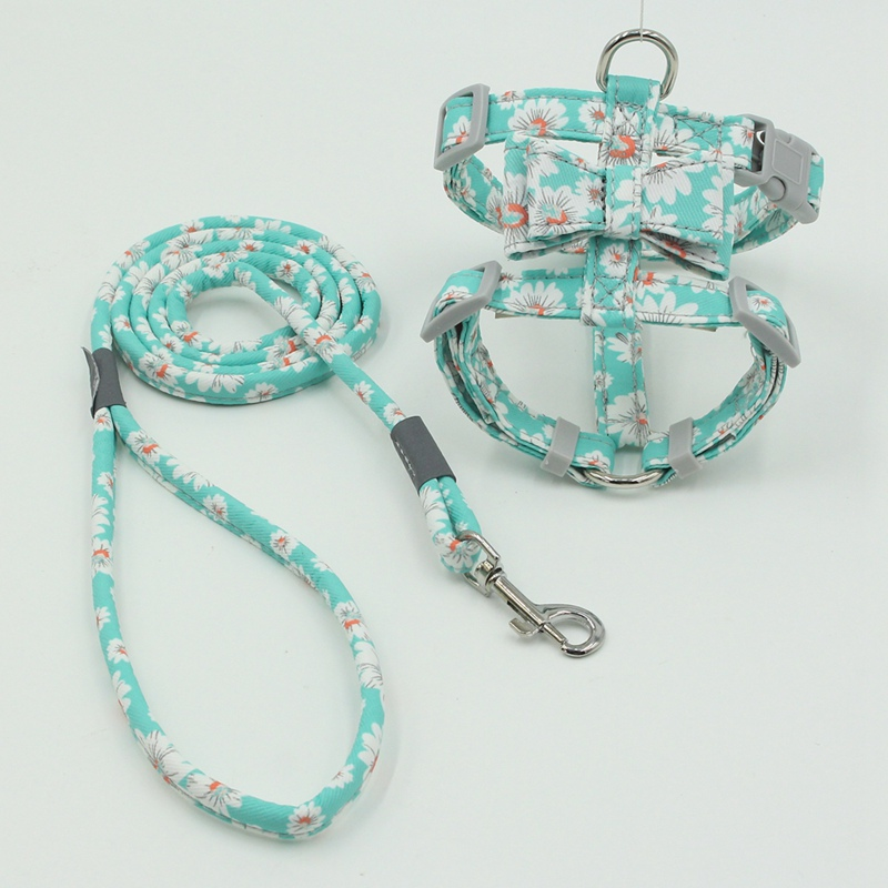 cute girl dog harness
