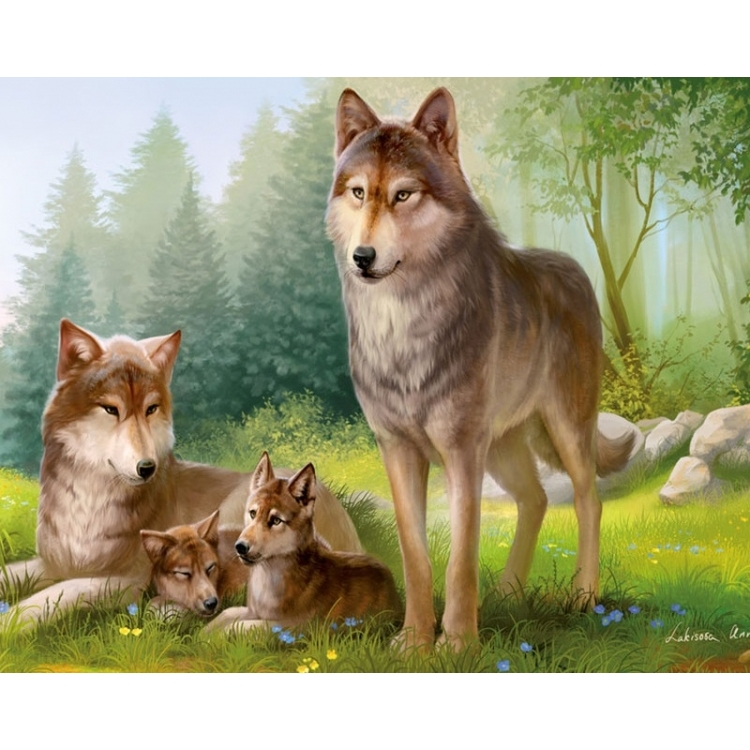 Painting By Numbers Wolf Family, 40x50 Cm