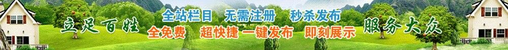 清河信息網,清河信息港
