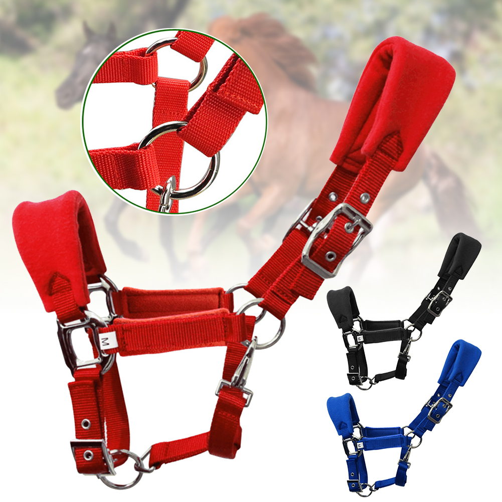 Riding Equipment Removable Sponge Pad Horse Halter Bridle Soft Adjustable Strap Practical Training Durable Sport Horse Riding