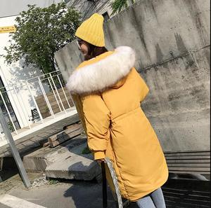 Image 2 - Haute qualité grande vraie fourrure 2019 nouvelle veste dhiver femmes à capuche femme épais manteau blanc canard doudoune longue lâche vers le bas Parka