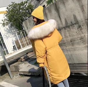 Image 2 - Tỉnh Qualité Grande vraie fourrure 2019 Nouvelle veste dhiver femmes à capuche Femme épais manteau Blanc canard doudoune longue lâche VERS Le Bas Vải Dù