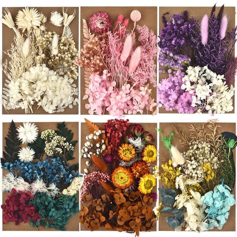 Сушеные цветы в цветочек для самостоятельного изготовления изделий из смолы, подходят для ароматерапии, свечи, эпоксидная рамка, украшение ...