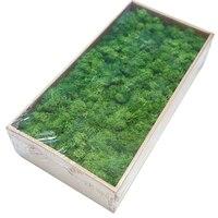 Artificial Moss Simulation Grass Bryophyte Bonsai Garden DIY Landscape Home Decor Plants Potted Plant Decor Accessories