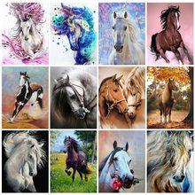 40x50cm diy quadro cavalo pintura a óleo por números kits de pintura acrílica por números na lona pintados à mão pintura animal