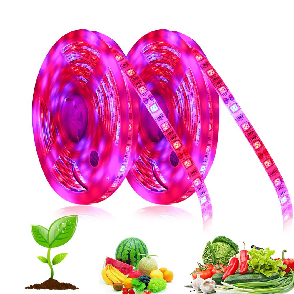 LED Grow Light Strip Full Spectrum Blue And Red Grow Light 60 LEDs/meter For Indoor Plants