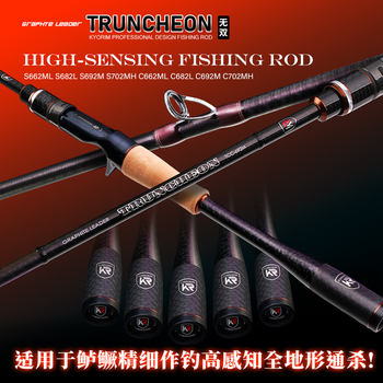 japan Fuji lure fishing casting spinning rods1.98m2.1m carbon ultralight Superhard L/ML/M/MH Action Fast Action Striped bass rod 1