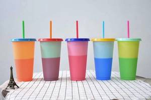 Coffee-Mug Plastic Reusable Drinking-Tumblers Magic-Cup with 100pcs Lid And Straw-Wb1448