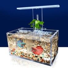 صندوق عزل أكريليك لخزان الأسماك ، مصباح LED ، مضخة مياه ، مرشح حوض السمك ، زخرفة سطح المكتب ، JJ50511