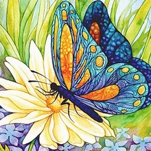 DIY 5D Diamond Painting Butterfly Mosaic Picture Rhinestone Diamond Embroidery Flowers Full Round Drill Cross Stitch Home Decor diy 5d diamond painting butterfly mosaic picture rhinestone diamond embroidery flowers full round drill cross stitch home decor