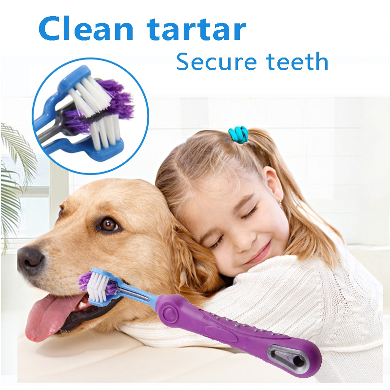 Big deal 1 Pcs Pet Toothbrush Addition Bad Breath Tartar Teeth Care Dog Cat Cleaning Supplies-Purple image