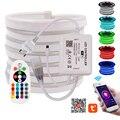 RGB неоновый светильник, Wifi, управление 5050, гибкий светодиодный светильник + 24-клавишный пульт, водонепроницаемый неоновый светильник, 110 В, 220 ...