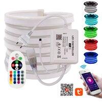 RGB Neon Streifen Licht Wifi Steuer 5050 Flexible LED Band + 24Key Fernbedienung Wasserdicht Neon Zeichen Seil Licht 110V 220V EU US AU UK