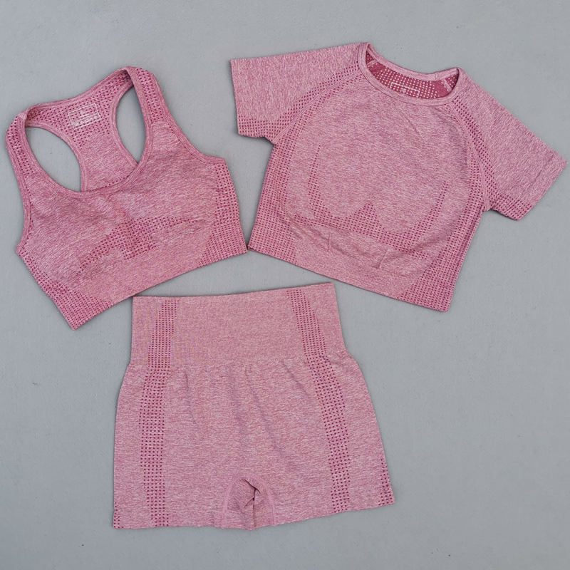 3Pcs-Vital-Seamless-Yoga-Set-Women-Gym-Workout-Clothes-Sports-Bra-Short-Sleeve-Fitness-Crop-Top (2)