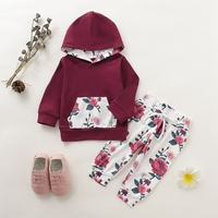 Baby Girls Clothing Set Tracksuit Long Sleeve Flower Print Hoodie Sweatshirt Tops+Pants Trousers 2Pcs Autumn Clothes Sets
