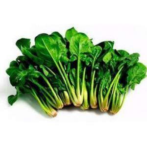20 Pieces Organic Spinach Free Shipping