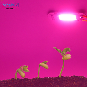 Image 5 - 5Psc led成長cobチップphytolampフルスペクトル220v 110v 20ワット30ワット50ワットdiy屋内植物苗成長花成長fitolamp