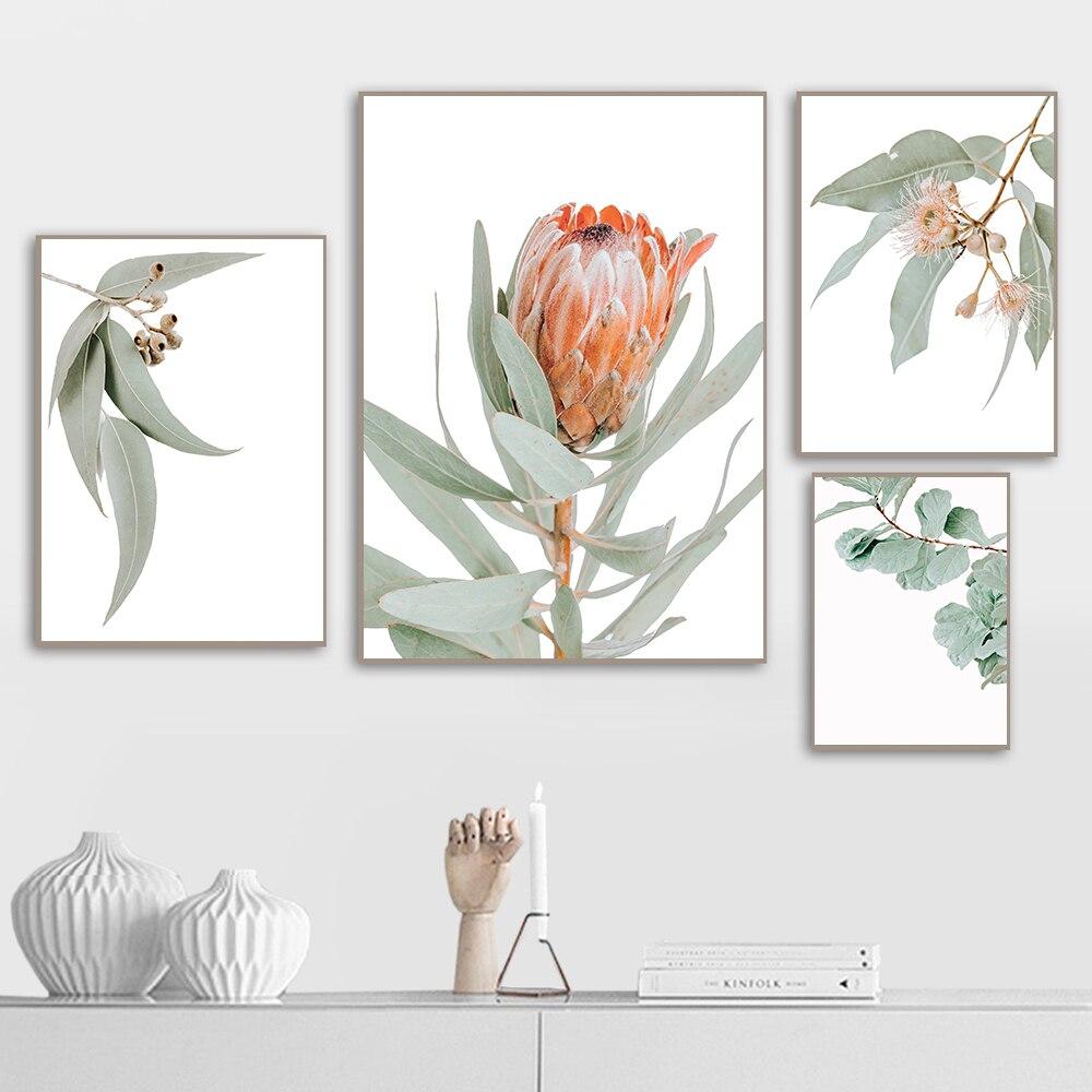 Австралийские растения листья король прочая цветы настенные художественные картины холст картины плакаты и принты для гостиной дома декоративные