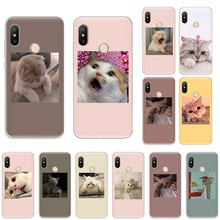 cute pink funny cat Silicone Soft Case For Xiaomi F1 9T 9 9SE 8 A2 Lite A1 A3 Go Mix3 Redmi K20 7A S2 Note 8T 4X 5 6 7 Pro cover(China)