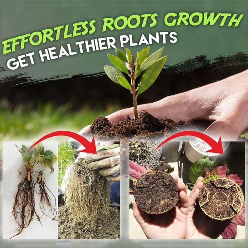 Rapid Rooting Powder Root Seedling Germination Water Soluble Flower Anther Fertilizer Sprouting Hormone Regulators