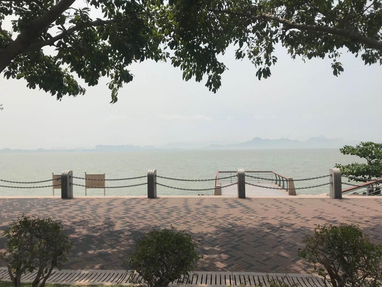 与你在深圳生活的三天插图17