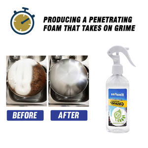 Kitchen-Grease-Cleaner Bubble Cleaning-P666 Foam-All-Purpose Household