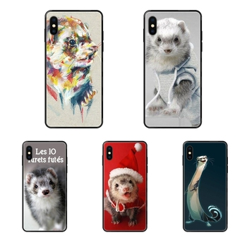 Ferret Hommes For Samsung Galaxy S5 S6 S7 S8 S9 S10 S10e S20 edge Lite Plus Ultra Black Soft TPU Live Love Phone image