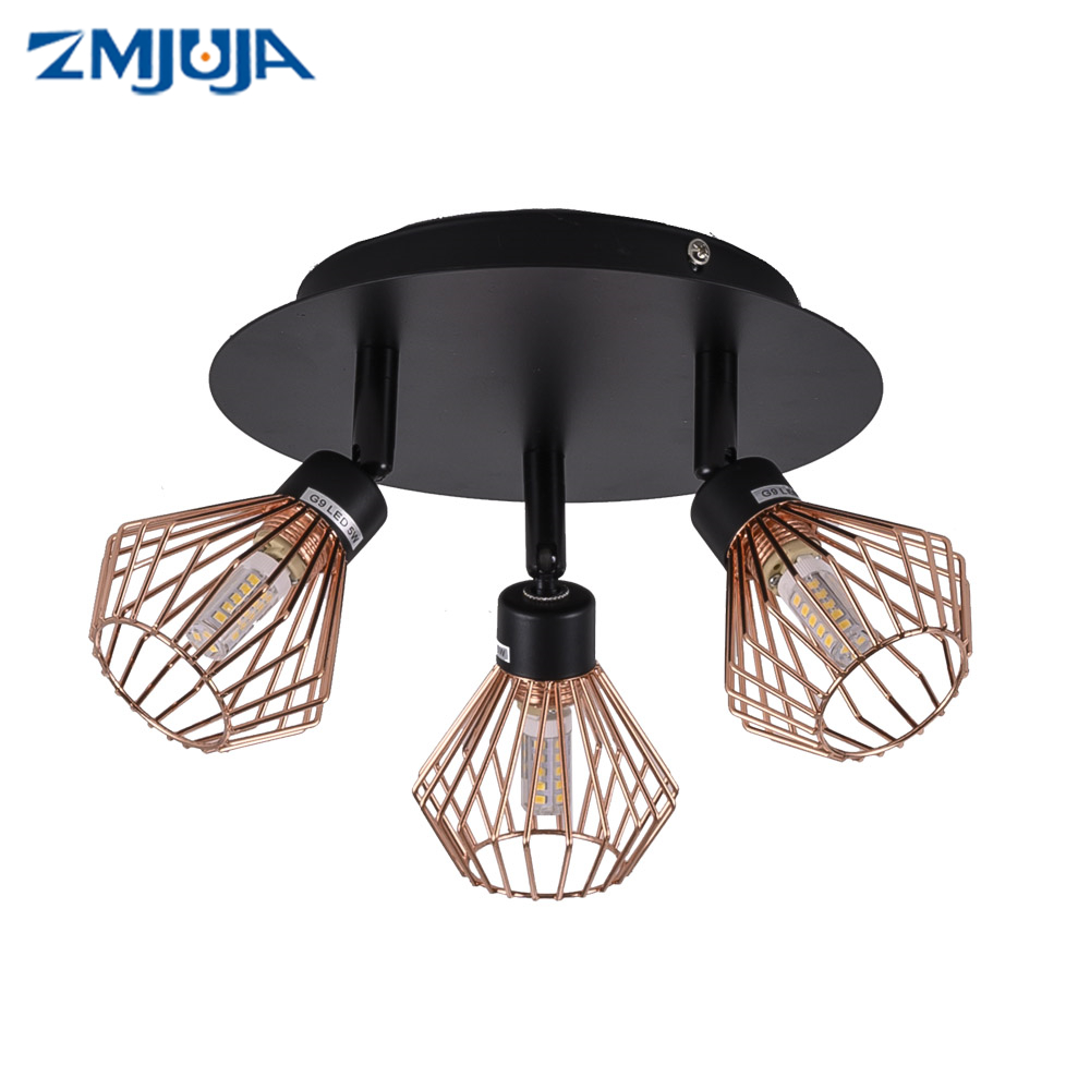 rotatable Black Ceiling Lamp Lighting with creative cage Angle adjustable G9 Lights Bulb for Store Shop Showroom lighting