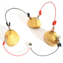 1Set Simple DIY Scientific Experiment Fruit Generator Creative Kids Physics Teaching Resources Funny School Toy Supplies