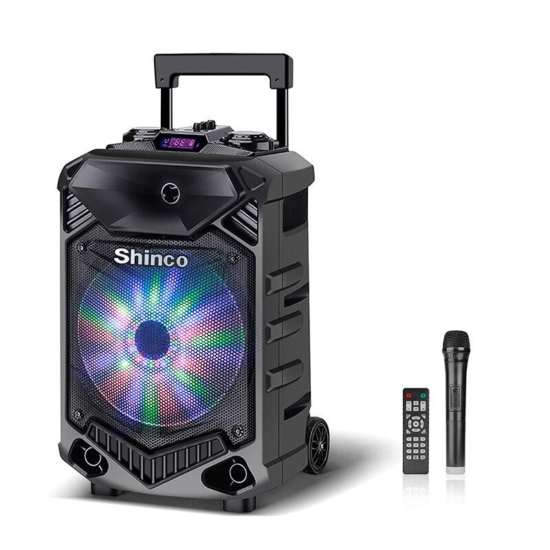 Orador portátil do karaoke do woofer de 12 polegadas com microfone shinco alto-falante do sistema de alto-falante de bluetooth do dj com coluna de alta potência