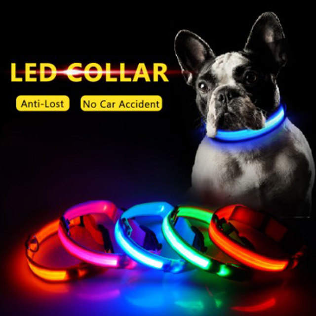 Night Time Safety Luminous Pet Collar with LED Flash- A Pets Alpha Pet Owner Pleaser ʕ•́ᴥ•̀ʔっ 1