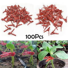 Grafting-Clips Flower Plastic Garden Vegetable Tomato 100pcs Vine-Bushes-Plants New-Arrival-Style