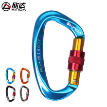 Outdoor Aluminum Professional Carabiner D Shaped Safety Master Screw Hooks Climbing Ascend Security Lock
