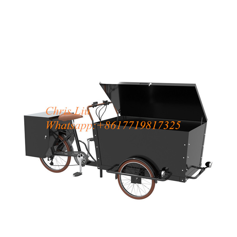 3-Wheel-Cargo-Bike-EQT-New-Cheap (3)